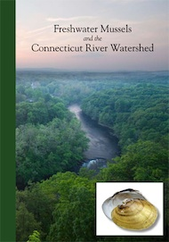Freshwater Mussels and the Connecticut River Watershed