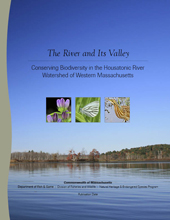 The River and Its Valley report