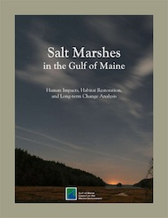 Salt Marshes in the Gulf of Maine